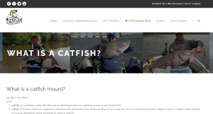what is a catfish? Catfishing information catfishing What Is Catfishing Screen Shot 2016 11 20 at 1