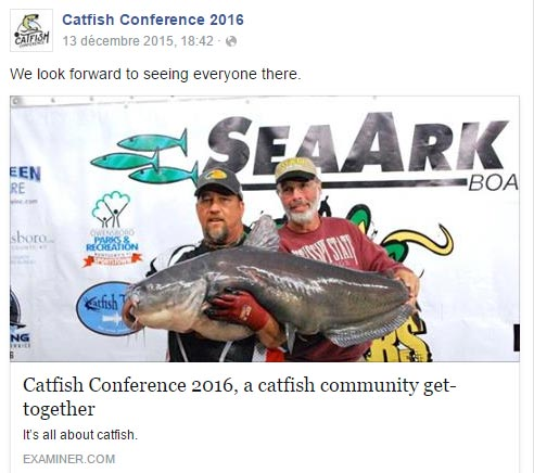catfish conference in the news Catfish Conference In The News catfish examiner screen